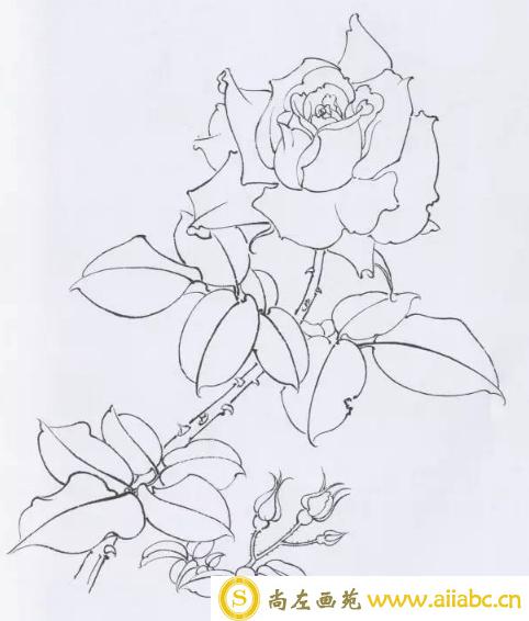 工笔画笔法介绍