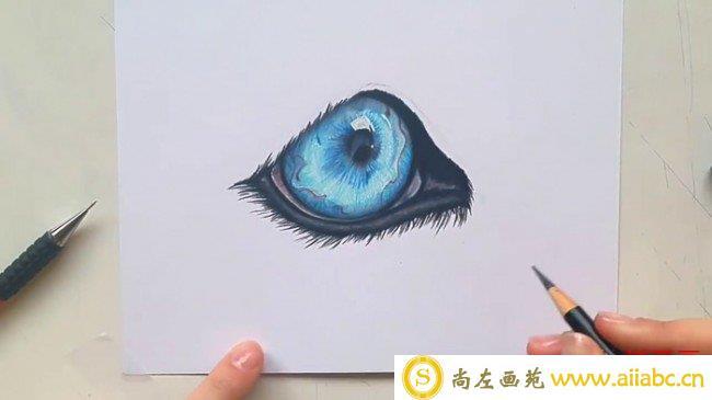 【视频】非常精美好看的猫眼彩铅画法视频教程 星空般猫眼的画法_