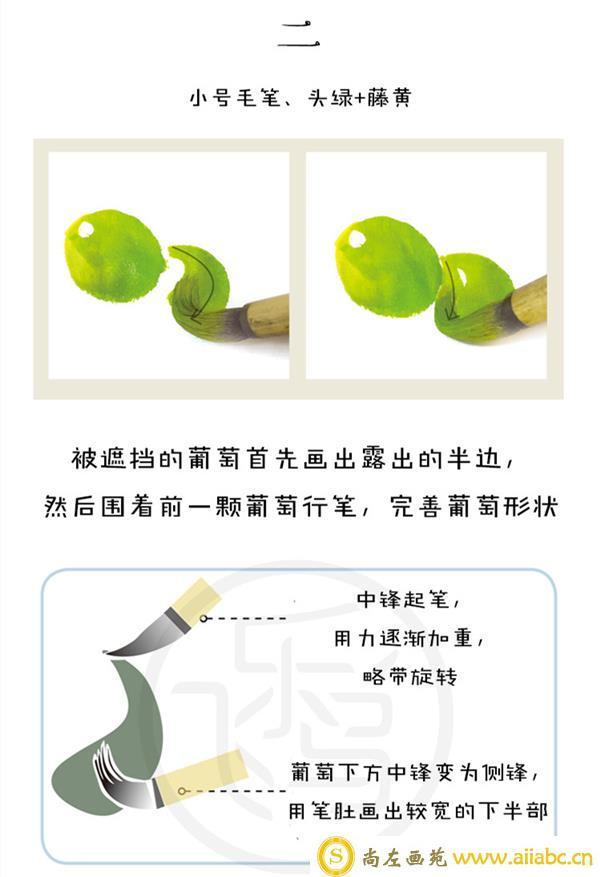 国画葡萄的画法和步骤
